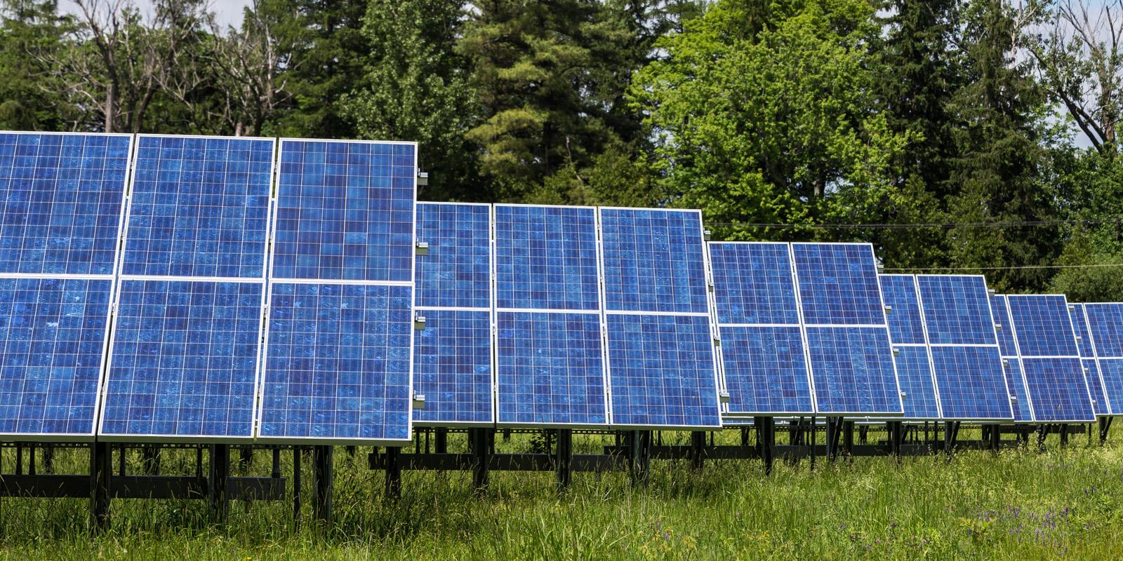 Guarding Solar Arrays